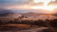 Evening light (Skye Auer) Tags: farm australia evening sunset autumn drought track shed rural victoria bonang skyeauer