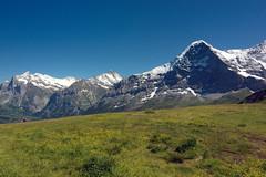 Alpine Meadow (Bephep2010) Tags: 1116mm 2016 77 atx116prodx alpem alpha bern berneroberland berneseoberland grindelwald slta77v schweiz sommer sony switzerland tokina wiese alps meadow summer ch