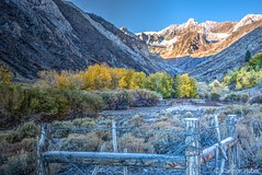 Autumn Morning in McGee Canyon_HDR_9247_48_49_50 (www.karltonhuberphotography.com) Tags: 2015 aspens autumn barbwirefence california easternsierra exploring fallcolors fence fenceposts hdr horizontalimage karltonhuber landscape mcgeecanyon morninglight mountainpeaks mountaintops mountains nature outdoors packstation peaceful quiet rugged sage shadows snow trees wildplaces