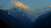 Annapurna Massif (sakthi vinodhini) Tags: morning light settlement annapurna nepal himalayas abc trek backpack mountains hills greenery ngc forest landscape mountain tree mountainside sunrise sky mist golden