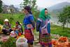 DSCF6414 (Steve Daggar) Tags: vietnam vietnamese bacha hmong markets ethnic colour bachamarket