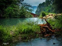 Tüfelsschlucht - Schweiz, Auch Regen kann schön sein (mariomüller1) Tags: natur wasser flus landschaft landscap farbe nature water flow color tree cloud panasonic fz200 hiking wandern schweiz