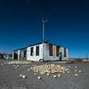 Hold The Onions (dejavue.us) Tags: onions longexposure d850 nightphotography nikon desert california vle garage startrails fullmoon 140240mmf28 nikkor mojavedesert abandoned ludlow