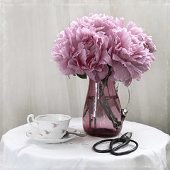 Right On Schedule... (lclower19) Tags: peonies pitcher cranberryglass pink muted odc teacup scissors spoon square