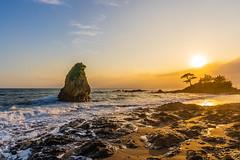 Tateishi Park at sunset (aotaro) Tags: ilce7m3 sun tateishi kanagawa sunset seashore fe424105goss pinetree seawaves sea tateishipark ocean japan rocks