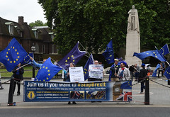 Img634632nxi_conv (veryamateurish) Tags: london westminster parliament housesofparliament abingdonstreet demonstration protest eu europeanunion brexit flags