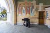 Оптина пустынь (vikkay) Tags: оптинапустынь монастырь история храм церковь пейзаж осень