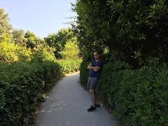 IMG_0303.jpg (Darren and Brad) Tags: sicilia italian grottadeicordari sicily italy italia syracuse parcoarcheologiconeapolis neapolisarchaeologicalpark siracusa it