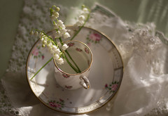 Springtime Teatime (Captured Heart) Tags: flowers lilyofthevalley whiteflowers teacup teatime chinacup lace vintage