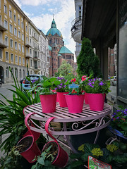 Munich Flowers (cs_one) Tags: europe germany münchen building city exterior flower house noperson outdoors street town traditional urban