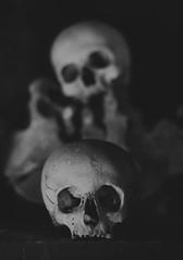 Memento Mori (henriksundholm.com) Tags: skulls skull death bw blackandwhite monochrome sad head cranium dof depthoffield shadows sockets ledge bones remains sedlecossuary kutnahora bonechurch czechrepublic 50mm