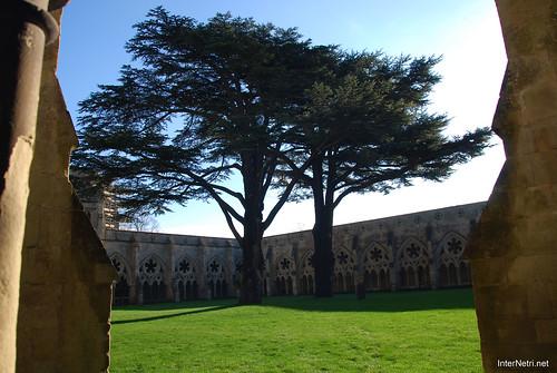 Солсберійський собор, Англія InterNetri United Kingdom 281