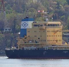 Tanja - IMO 971752 (Jacques Trempe 3,35M hits - Merci-Thanks) Tags: stefoy quebec canada ship navire fleuve rive stlaurent stlawrence transportation vraquier bulker tanja