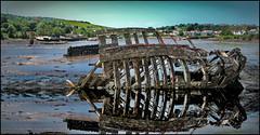 Ships graveyard at Hooe Lake (wilstony1) Tags: ship wreck hull decay sea water boat daytime reflection panasoniclumixgx7 acdsee