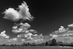 Heart shaped clouds over Varbovchets (Milen Mladenov) Tags: 2018 bw blackandwhite bulgaria d7200 landscape nikon smedovetsmountain varbovchets bushes clouds daytime field green nature shrub sky trees view weather