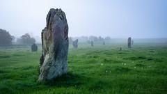 West Kennet Avenue (AppleTV.1488) Tags: avebury henge neolithic prehistoric stonecircle stonehenge stonemonument westkennetavenue worldheritagesite appletv1488 2018 may 12052018 12may2018 12 nikond7100 18250mmf3563 39mmfocallength35mm am noflash landscapeapectratio f22 800secatf22