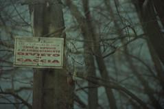 Parco del Roccolo III (Silvia Kuro) Tags: sinister evil creepy wood rural italian landscape film hunt rabbit animal divieto caccia coniglio morto