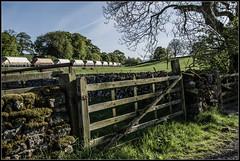 Limestone country (Blaydon52C) Tags: rylston gate yorkshire dales cracoe hetton skipton railway rail railways trains train transport railfreight locomotive locomotives loco gbrf gbrailfreight 66759 6d87 2018