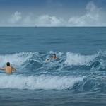 Swimming in the ocean. thumbnail