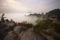 A Foggy Morning at the Bastei (Stefan Zwi.) Tags: bastei nebel sächsischeschweiz fog morning morgen canyon dawn sonnenaufgang elbe ngc npc