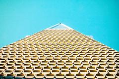 One of These Days (Thomas Hawk) Tags: america california financialdistrict sanfrancisco transamerica transamericabuilding transamericapyramid usa unitedstates unitedstatesofamerica architecture fav10 fav25 fav50 fav100