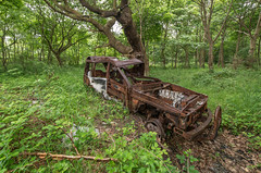 Disco Inferno (Rob Pitt) Tags: land rover discovery sony a7rii samyang 14mm f28 booston woods burnt out wreck wirral cheshire