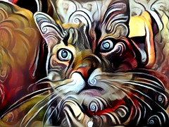 Tigger's Quest (sjrankin) Tags: 8june2018 edited processed filtered animal cat tigger closeup chair kitchen yubari hokkaido japan