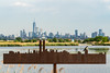 The Memorial Skyline (sullivan1985) Tags: newjersey kingsland lyndhurst bergencounty meadowlands meadows treeswallow bird newyork newyorkcity nj ny worldtradecenter freedomtower marsh skyline manhattanskyline afternoon