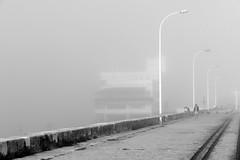 Paseo (alfonsocarlospalencia) Tags: niebla santander cantabria marítimo paseo enamorados farolas agosto raíles verano soledad pensamientos muro bahía byn siluetas contornos ventanas toldo perro pilotes atmósfera