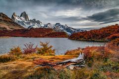 Lake Capri (Valter Patrial) Tags: lake capri patagonia elchaltén mountains autumn colors beautiful land landscape tree