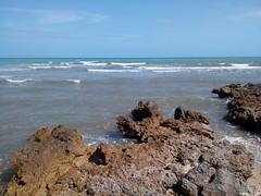 IMG_20180313_113737 (reinh_3008) Tags: tunisia tunesien tunesia beach impression traces human environment nature
