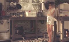 empty spaces (Callie Hamelin) Tags: shinyshabby ss rkkn kunst ilaya serenitystyle liaisoncollaborative applefall dustbunny