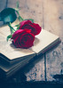 Red roses (Ro Cafe) Tags: redroses roses stilllife arrangement blooms book flowers romantic setup table tabletop wood rustic red nikkormicro105f28 nikond600