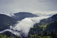 Escaping a sea of fog (PeterThoeny) Tags: schuders schiers swissalps switzerland grisons prättigau rain wet forest tree day outdoor cloud clouds cloudy fog seaoffog sky mountain landscape 3xp raw nex6 photomatix selp1650 hdr qualityhdr qualityhdrphotography fav100 mist grass