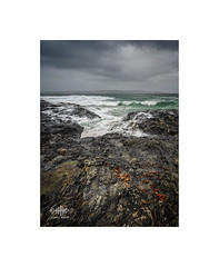 Wet Rocks (silver/halide) Tags: johnbaker seashore seascape seaweed shoreline rocks weather waves waveaction westcornwall westpenwith atlantic atlanticocean