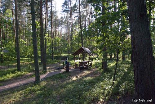 Шацький Національний Природний Парк Озеро Луки Перемут InterNetri  Ukraine 20