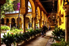 Palacio de Dueñas - Sevilla (mgarciac1965) Tags: jardín patio palacio lasdueñas sevilla seville siviglia andalucía andalucia andalusia españa espagne spain nikon nikond5200 people art