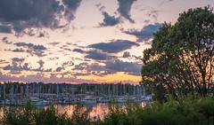 Swantown Sunset-052318 (arohila98501) Tags: olympia washington sunset water tree boat yellow washingtonstate arunrohilaphotography reflection