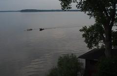 morning row (humbletree) Tags: madisonwisconsin lakemendota olympus omdem5 rowing