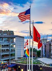 2018.06.05 Capital Pride People and Places, Washington, DC USA 02784