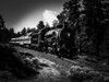 President Day Special (Woodypug) Tags: rowewell grandcanyonrailway gcnp blackwhite train south rim steam locomotive landscape