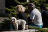 Mascotas 1 (guspaulino1) Tags: mascotas perros cachorros argentina buenosaires nikon street calle ciudad gente nikond80 nikon8020028 plazas parques