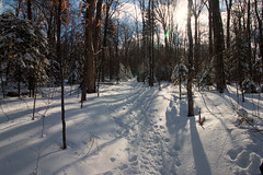 20180203-IMG_2933-Edit (franciscoruela) Tags: hiking winter landscape mt garvey