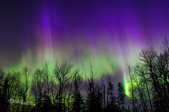 Ionized Gas V (Images by Beaulin) Tags: grandportageindianreservation nightsky starscape auroraborealis starrysky grandportage stars astrophotography starphotography northernlights cookcounty nightscape starrynight minnesota