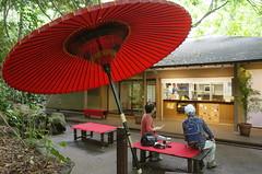 Open Tea House in Tokyo(Todoroki) (seiji2012) Tags: 東京 等々力渓谷 和傘 umbrella tokyo todoroki restaurant
