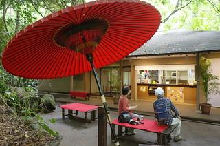 Open Tea House in Tokyo(Todoroki)