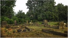 plots (andystones64) Tags: gravestones graves headstone religion plots grief peaceful bushes trees churchyard daylight grass holy headstones image imageof imagecapture nature outside outdoors scunthorpe vintage lincolnshire northlincs northlincolnshire