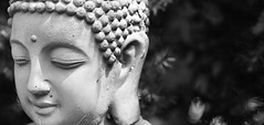A Peaceful Mind (Orange Attitude) Tags: blackandwhite eos canon 50mm statue buddha monochrome blancoynegro religion abstract light white depthoffield bokeh travel peace mind heart