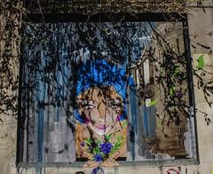 La CIUDAD cuenta lo que sus muros hablan - The CITY tells what its walls speak. (goma741) Tags: callejón escritura free libre arcén andén exterior external viajero world mundo grafiti graffiti art arte colors color urban urbano street calle wall muro gente retrato pintura acera personas ilustración mosaico geometría paisaje streetart carretera boceto dibujo animado madrid españa rótulo líneas canon travel edificio
