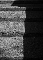 Earlstoke Estate (cybertect) Tags: carlzeisssonnart85mmf28 clerkenwell ec1 earlstokeestate london londonboroughofislington londonec1 moorgreenhouse rhwl rentonhowardwoodlevin rentonhowardwoodlevinassociates sonya7ii architecture blackwhite blackandwhite building concrete monochrome shadow socialhousing steps